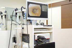 鼻咽喉用内視鏡